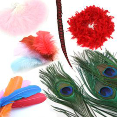 Picture for category Productos de Plumas de Ave